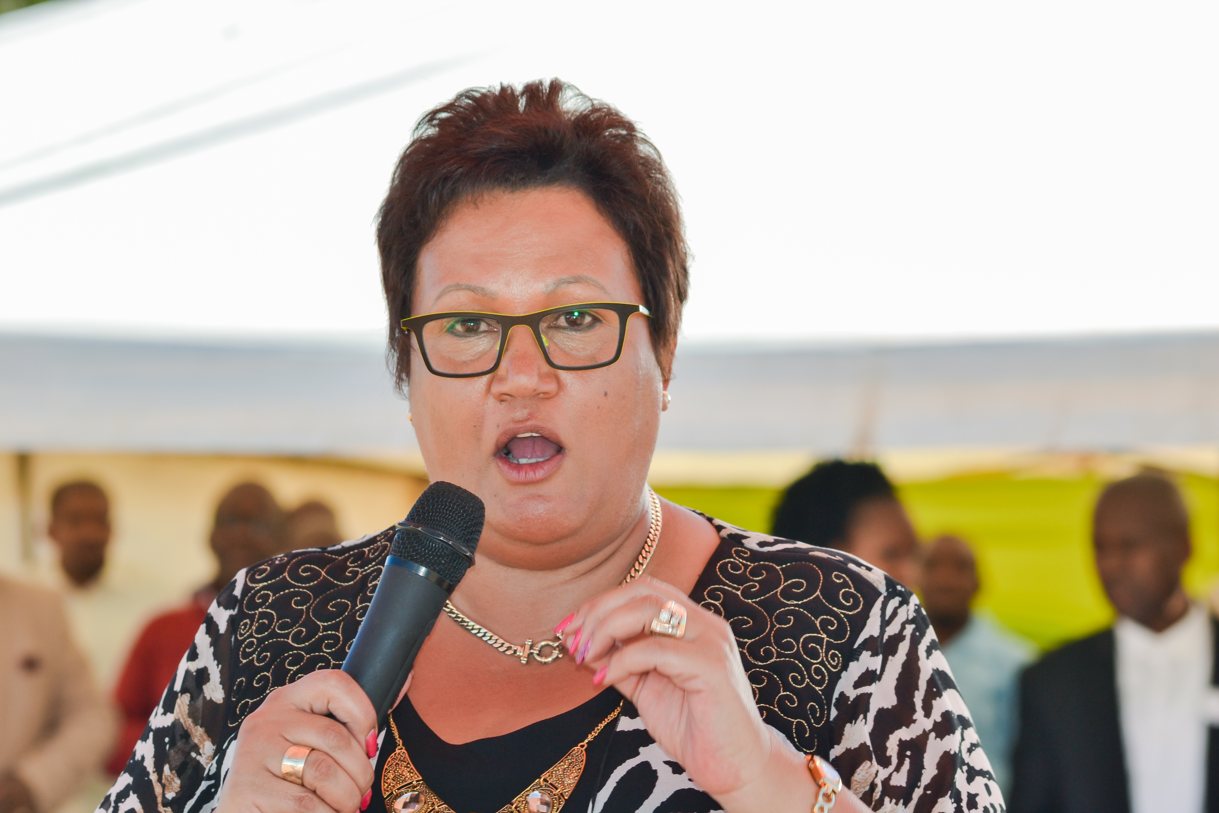 Wendy Nelson appointed acting NW premier as Supra takes leave of absence